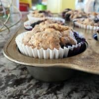 blueberry muffins in a muffin tin on a granite counter top