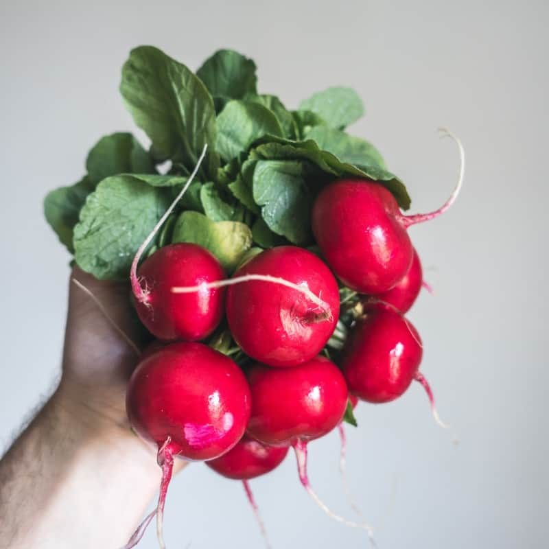 handful of radishes with greens still attached