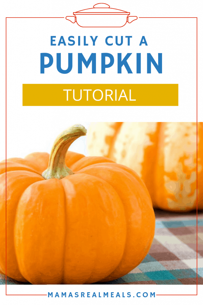 Pumpkins can be so intimidating! But let me help you by breaking it down in a simple step by step how to cut, dice and cook a pumpkin!